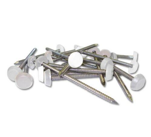 Poly Pins 25mm White Plastic Headed Nails 50 Quantity Fascia nails