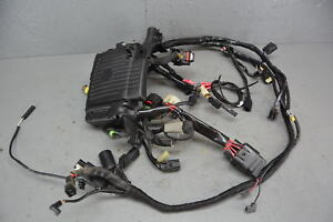 details about 15 harley iron sportster 883 xl883n oem main wiring harness motor wire harley sportster wiring diagram xl sportster wiring harness w