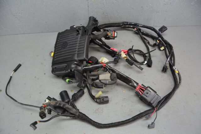 Harley Wiring Harness on