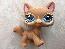 Littlest Pet Shop RARE Short Hair #3578 Brown Caramel Blue Walking LPS