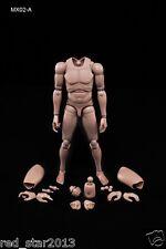 1/6 Scale 12Inch Male Muscle Body MX02-A Caucasian Skin Tone Man Body