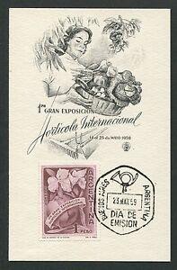 ARGENTINA-MK-1959-FLORA-HORATICOLA-MAXIMUMKARTE-CARTE-MAXIMUM-CARD-MC-CM-d7083