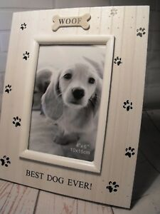 Dogs Photo Frame Best Dog Dog Lovers Photo Gift Me And My Dog