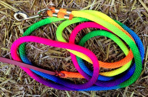 3,70 m Westernrope Führstrick Rainbow Neon-farben *NEU* Bodenarbeitsseil