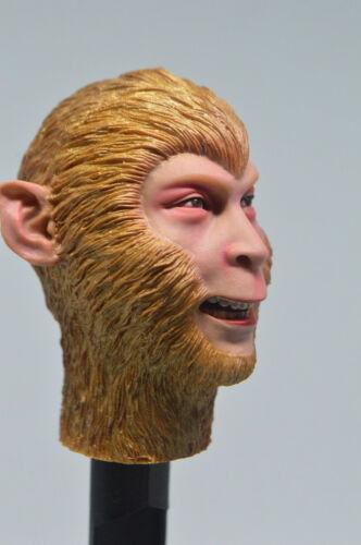 HOT FIGURE TOYS 1//6 Journey to the west Monkey King headplay Custom