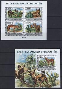 Burundi-2013-Kakteen-Cactuses-Kaktus-Cactees-Hunde-Wildhunde-Dingo-Rothund