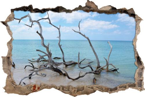 Treibgut Strand 3D-Look Durchbruch Wandtattoo Aufkleber-Sticker