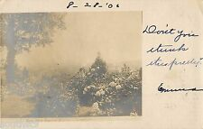 1906 View From Amsinck's Hill, Summit, New Jersey Real Photo Postcard/RPPC