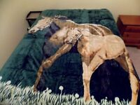 Queen Size Korean Style Mother Horse & Baby Colt In Field Plush Mink Blanket