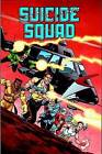 Suicide Squad: Volume 1: Trial by Fire by John Ostrander (Paperback, 2015)