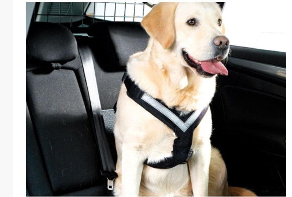 Hundesele, Sikkerhedssele til bil