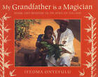 My Grandfather is a Magician: Work and Wisdom in an African Village by Ifeoma Onyefulu (Paperback, 2007)