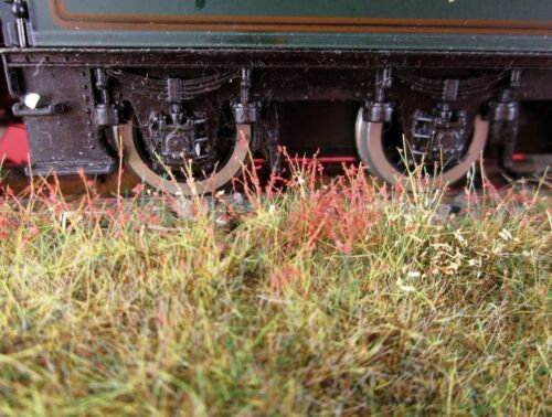 WWS Patchy Mix Static Grass Bag 4mm 20G Scenery Model Railways Arts Crafts