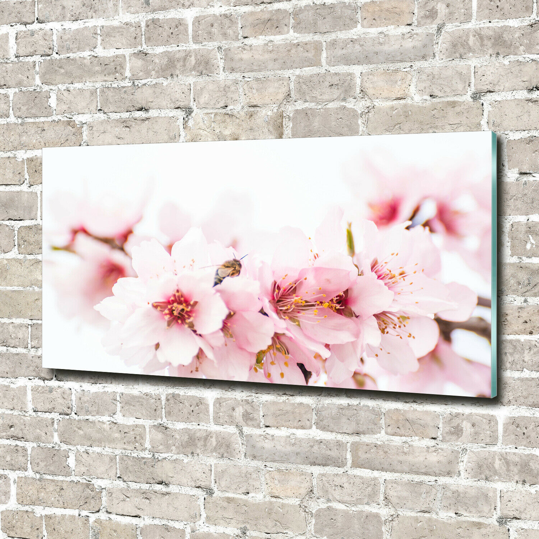 Wandbild aus Plexiglas® Druck auf Acryl 140x70 Blaumen & Pflanzen Kirschblüten