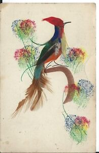 Image Is Loading C1950s Vintage Mexican Folk Art Bird Of Paradise