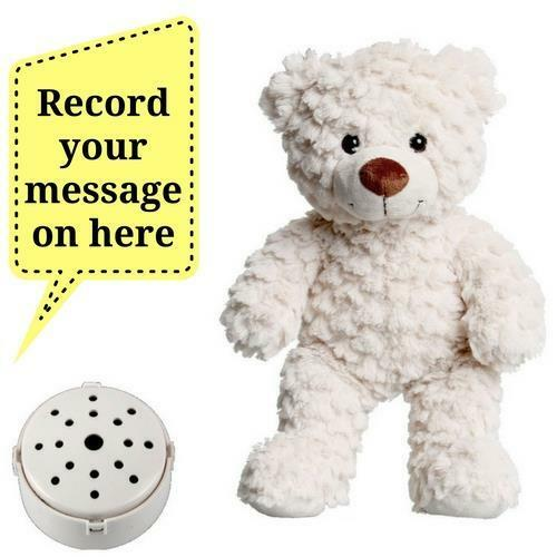 """Record a 20 Second Message /& Send in a Fluffy Cream Gift Teddy Bear 25cm//10/"""""""