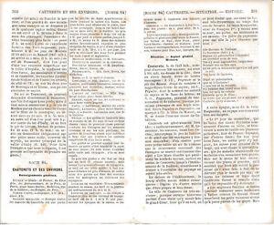 65-Gazost-Cauterets-Monne-1862-guide-orig-20-p-Banos-de-Panticosa-Vignemale