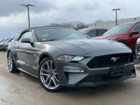 Grey Mustang Gt Kijiji In Ontario Buy Sell Save With