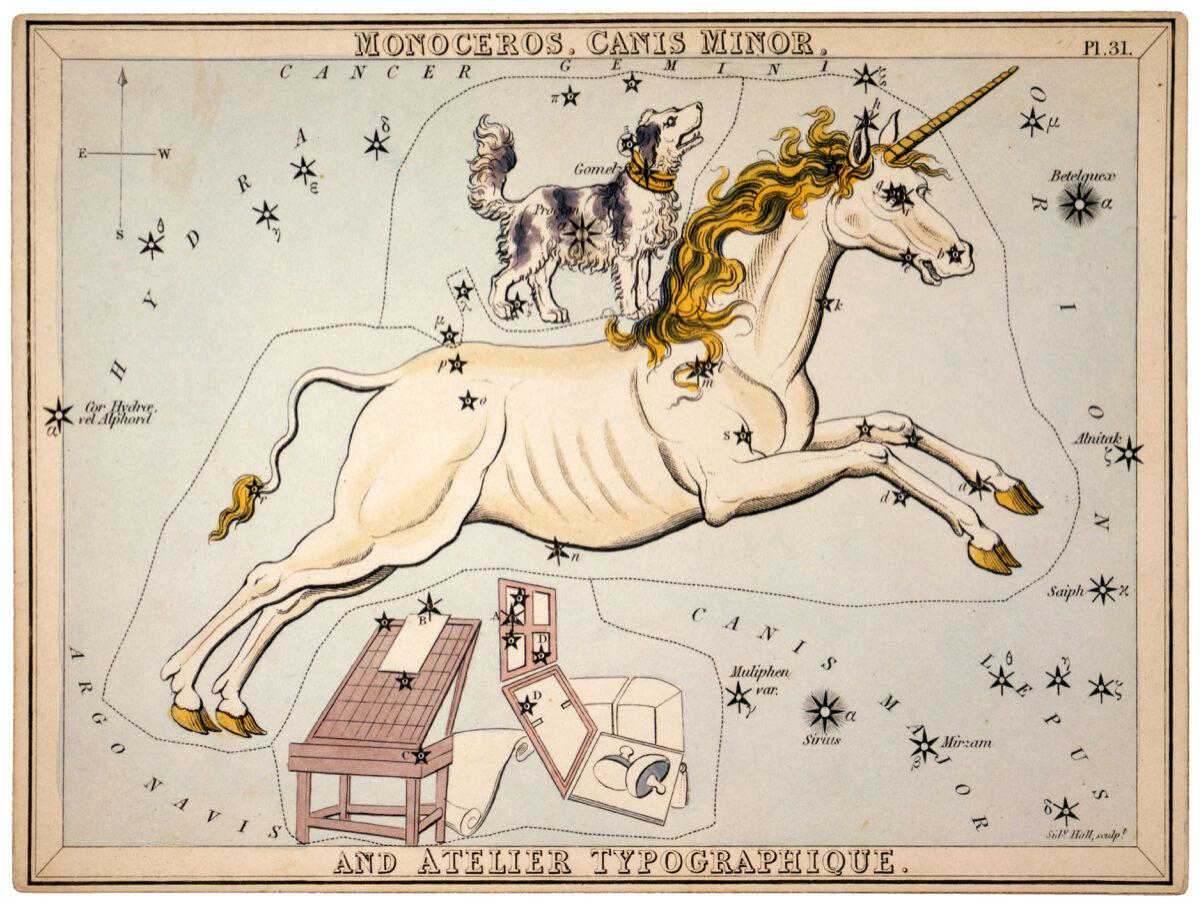 16x20 Decoration CANVAS.Interior design art.Unicorn Astrology hGoldscope.6291