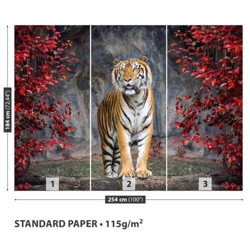 Papier-Fototapete Fototapeten Tapete aus Papier Poster Foto Tiger