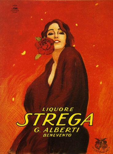 Fashion Lady Liquor Strega Rose Flower Italy Vintage Poster Repro FREE S//H