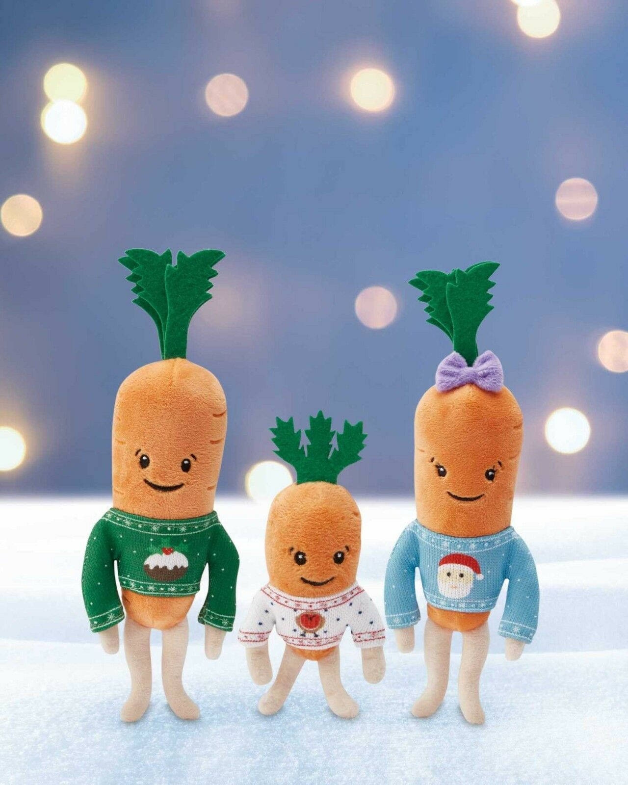 Kevin the Carred, Katie,Jasper, Chantenay, Baby Xmas & Pascal the Parsnip