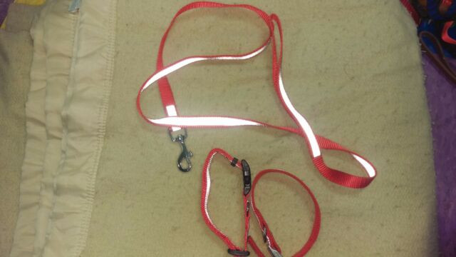Red Reflective Leash And 2 Collars Small