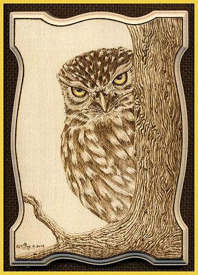 "Little Owl ACEO Ltd Ed Print ""Peek-a-Boo"""