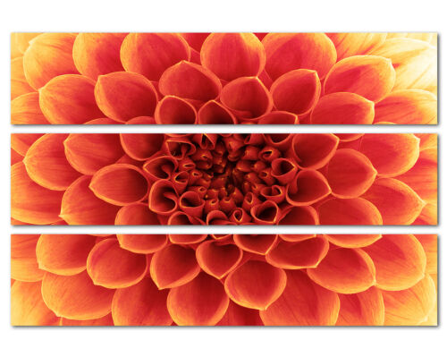 140x90 Blumen wunderschön Blütenblätter rot orange Keilrahmen Leinwand Sinus Art