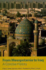 From Mesopotamia to Iraq: A Concise History by Hans J. Nissen, Peter Heine (Paperback, 2009)