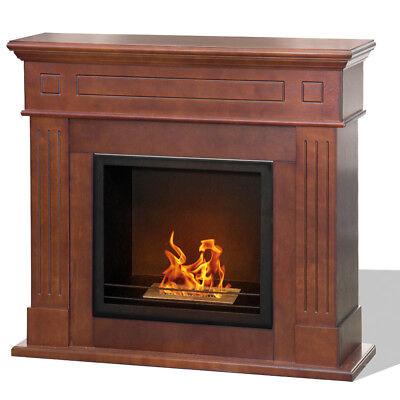 Divina Fire Camino biocamino a bioetanolo legno bruciatore inox 1.5l CAMBRIDGE