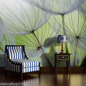 fototapete fototapeten tapete tapeten foto inkl kleister pusteblume blume 271 p8 ebay. Black Bedroom Furniture Sets. Home Design Ideas