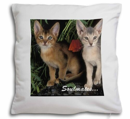 Abyssinian Kittens 'Soulmates' Soft Velvet Feel Cushion Cover With I, SOUL5CPW