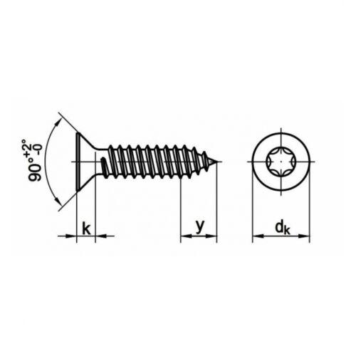 100x ISO 14586 Senkkopf-Blechschrauben mit Innensechsrund C 3.9 x 25 A2 blank
