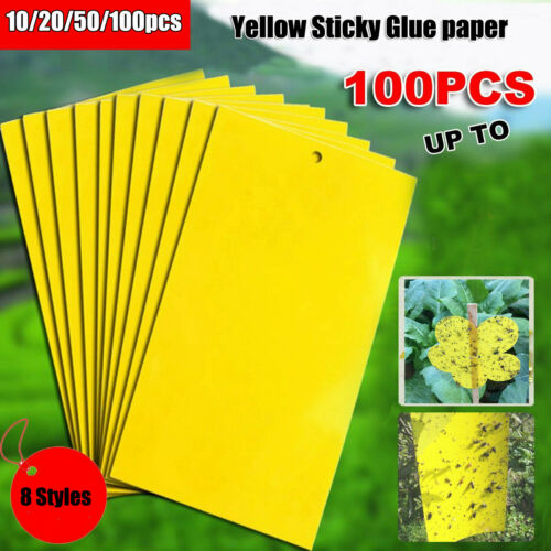 Lot Wasp Fly Aphids Insect Trap Catcher Yellow Sticky Glue paper Insect Killer
