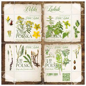 Details about  Poland 2020. Polish Herbarium. Flora. Flowers Souvenir Sheet. MNH**