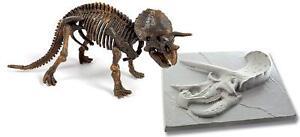 Triceratops-Fossil-Dinosaur-Skeleton-Kit-amp-Skull-Mould-Educational-Toy-Science