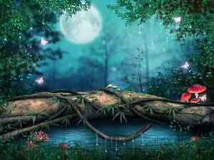 Wall Mural Children Fairy Forest Large Repositionable Vinyl Interior
