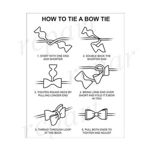 New men/'s self tie free style bowtie set paisley polyester wedding burgundy