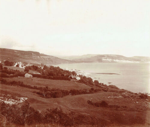 Panorama of Lyme Regis, Dorset from the East. Superb Large 1890s Photograph.