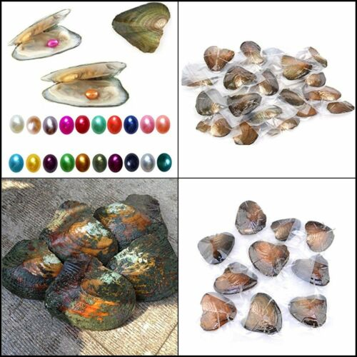 Freshwater Cultured Pearl Oyster avec 7-8 Mm Ovale pearl inside Aléatoire Couleur 10pcs