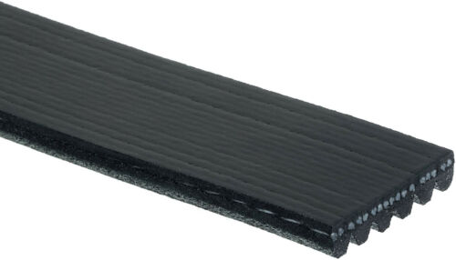 Serpentine Belt-Premium OE Micro-V Belt Gates K060926