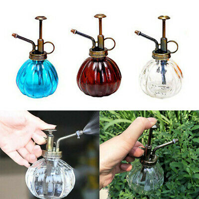 Mini Plant Mister Water Spray Bottle with Top Pump Watering Can YYM