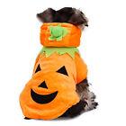 Pet Dog Clothes Halloween Pumpkin Costumes Puppy Dog Cat Apparels Hoodie Coat