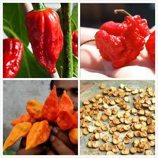 100PCS Mixed Ghost Pepper Carolina Reaper Trinidad Moruga Scorpion Chili Seeds