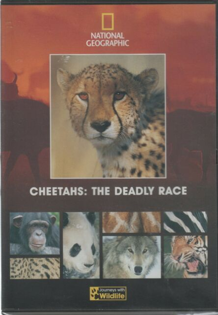 National Geographic Part 13  Cheetahs: The Deadly Race [DVD]