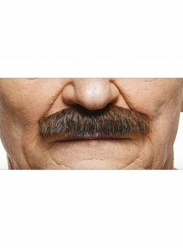 Schnauzer bigote