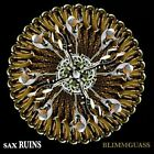 Blimmguass by Sax Ruins (CD, 2013, Skin Graft Records)