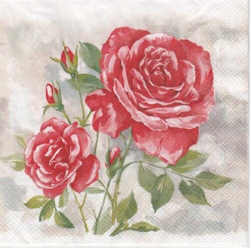 Papel 4x Servilletas Para Decoupage Craft Party-Rose Boutique Rojo