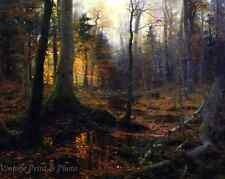 Fallen Monarchs by William Bliss Baker Trees Woods Forest 8x10 Art Print 0659